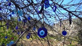 在树的五颜六色的凶眼小珠护身符 影视素材