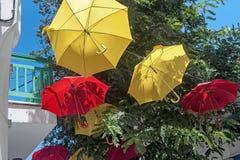 在树的伞 库存照片
