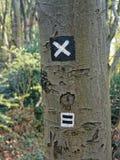 在树的供徒步旅行的小道标志 库存照片