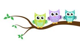 在树的动画片猫头鹰 库存图片