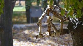 在树的喂食器 免版税库存图片