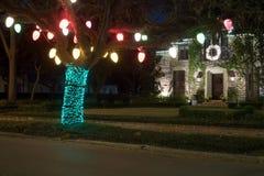 在树的圣诞节装饰 冬天,夜,休斯敦,得克萨斯,美国 图库摄影