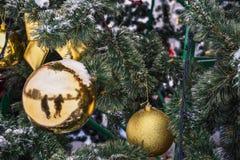 在树的圣诞节金黄球在雪 免版税库存图片