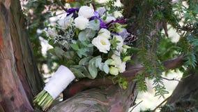 在树的婚礼花束, 影视素材