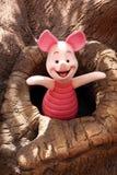 在树的小猪 免版税库存图片