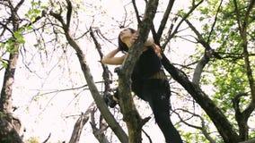 在树的年轻性感的舞蹈家妇女跳舞 股票录像
