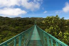 在树的机盖的暂停的桥梁在Monteverde,哥斯达黎加 库存图片