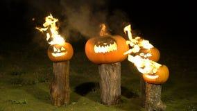 在树的燃烧的万圣夜南瓜登录黑暗,领域,薄雾,黄昏 可怕滑稽的恼怒的大橙色南瓜呼气火 影视素材