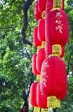 在树的红色灯笼吊 免版税库存照片