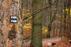 在树的蓝色远足的标记 免版税库存照片