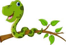 在树的逗人喜爱的翠青蛇动画片 库存照片