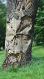在树的雕刻在树木园诺丁汉英国 免版税库存图片