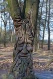 在树的面孔 免版税图库摄影
