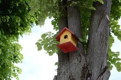 在树的鸟笼 库存照片