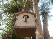 在树的鸟舍 免版税库存照片