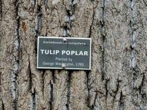 在树的鹅掌揪标志在Mt弗农 免版税图库摄影