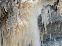在树的冻水在Valaste瀑布爱沙尼亚 库存照片