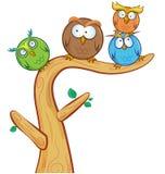 在树的滑稽的猫头鹰小组动画片 免版税库存图片
