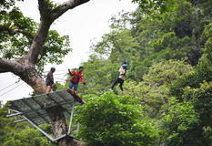 在树的Zipline冒险 免版税库存图片