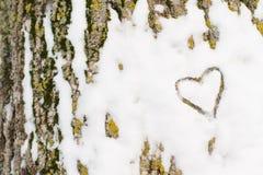 在树皮的心脏雪 免版税库存图片