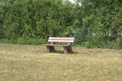 在树篱前面的公园长椅 免版税库存图片