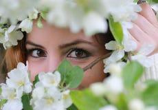 在树花后的女孩眼睛 免版税库存照片
