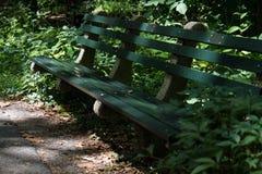 在树荫下的绿色木长凳 免版税库存照片