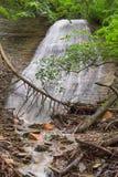 在树荫的银色小瀑布 库存照片