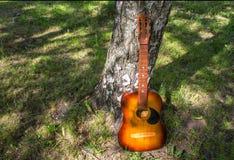 在树附近的木声学吉他 图库摄影