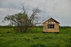 在树附近的未完成的木房子 库存图片