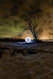 在树附近的未来派发光的球形在夜风景背景  免版税库存图片
