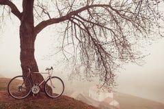 在树附近的葡萄酒自行车在雾 图库摄影