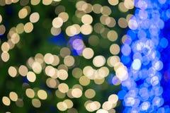 在树,抽象defocused背景的圣诞灯 库存照片
