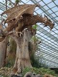 在树,新加坡的龙 库存照片