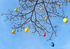 在树,由天空决定的看法的复活节彩蛋 库存照片