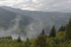 在树, Apuseni山,罗马尼亚的薄雾 免版税库存图片