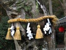 在树, Himure Hachiman寺庙, OmiHachiman, Jap附近的Shimenawa 库存照片