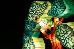 在树2的被照亮的鸟 免版税库存照片
