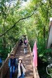 在栖霞山的木路 免版税库存图片