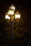 在栗子背景的灯笼  库存图片
