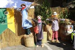 在栗子节日的稻草人 库存图片