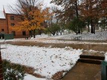 在校园里的第一雪天 库存照片