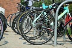 在校园里的许多停放的自行车回到学校 免版税库存照片