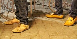 在样式的夫妇鞋子 免版税库存图片