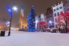 在格但斯克老城镇冬天风景的圣诞树  免版税图库摄影