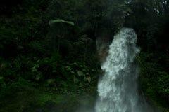 在格德火山Pangrango国家公园的Cibereum瀑布 库存照片