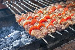 在格栅准备的开胃新鲜的肉 库存图片