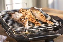 在格栅在家烘烤的鱼栖息处 图库摄影