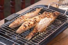 在格栅在家烘烤的鱼栖息处 库存照片