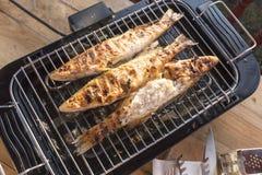 在格栅在家烘烤的鱼栖息处 免版税库存图片